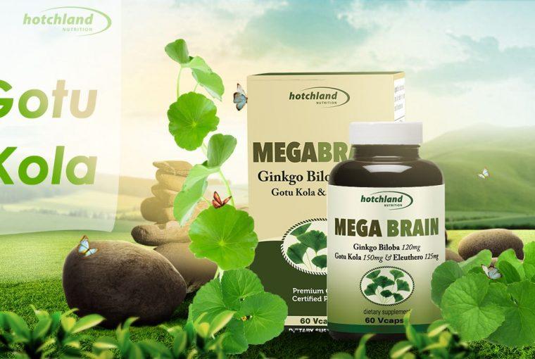Thực phẩm chức năng bổ não MegaBrain của Mỹ
